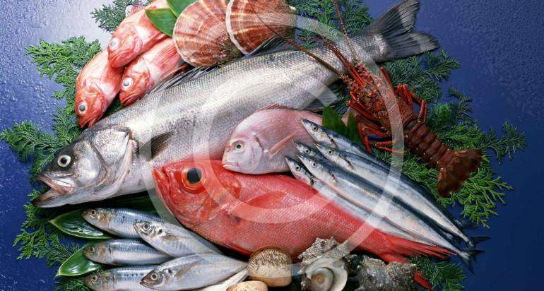 Salmon and trout are no longer a luxury